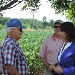 As a member of the House Committee on Agriculture, Cheri is a strong voice for family farmers in our region, making sure their voices are heard on the national level.