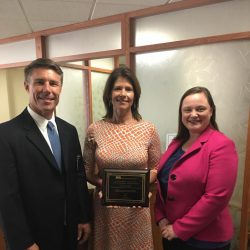 The Illinois Hospital Association named Cheri the 2016 Rural Legislator of the Year. Cheri's previous work in the healthcare industry led her to become a strong advocate for small and rural hospitals and the services they provide to communities across Illinois.